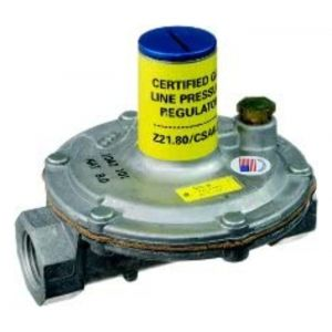 Gas Pressure Regulator, 1/2 in.
