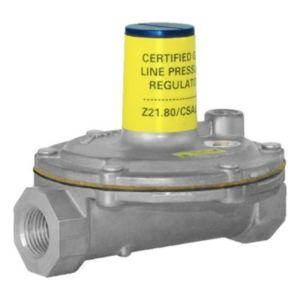 Gas Pressure Regulator, 3/8 in.